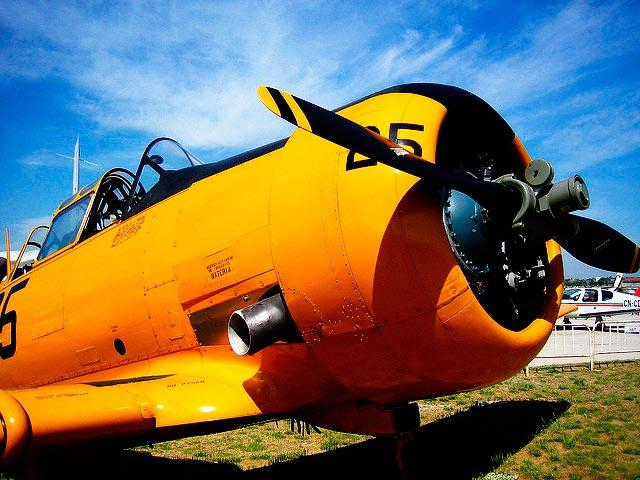 Avión con biocombustible