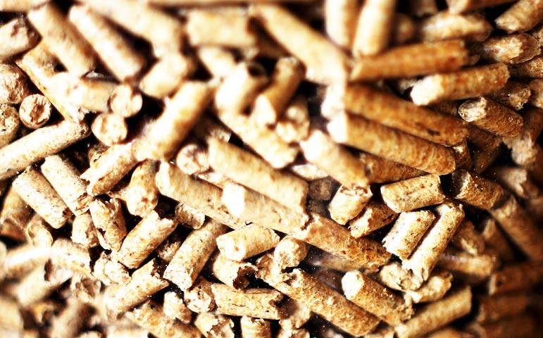 Pellets para biomasa