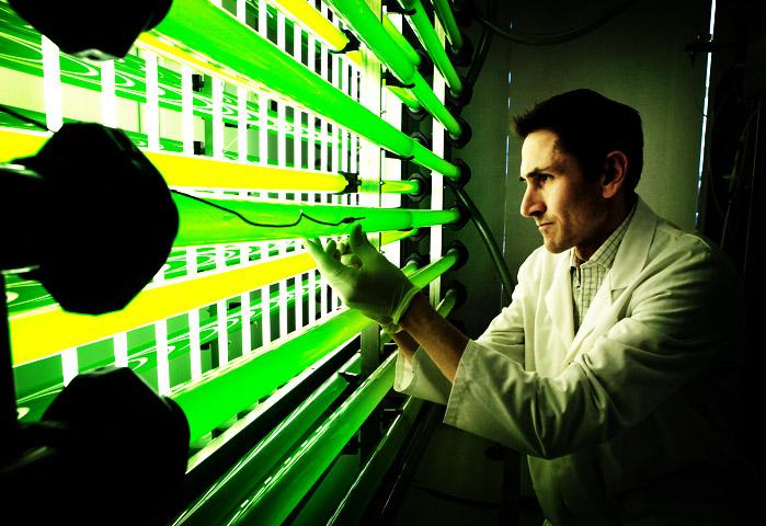 Fotobiorreactor de microalgas
